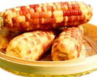 2.10日团品:云南香糯小玉米
