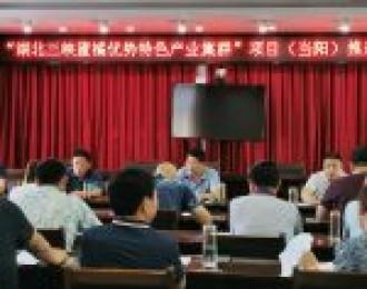 """当阳:""""湖北三峡蜜橘优势特色产业集群""""项目推进会召开"""